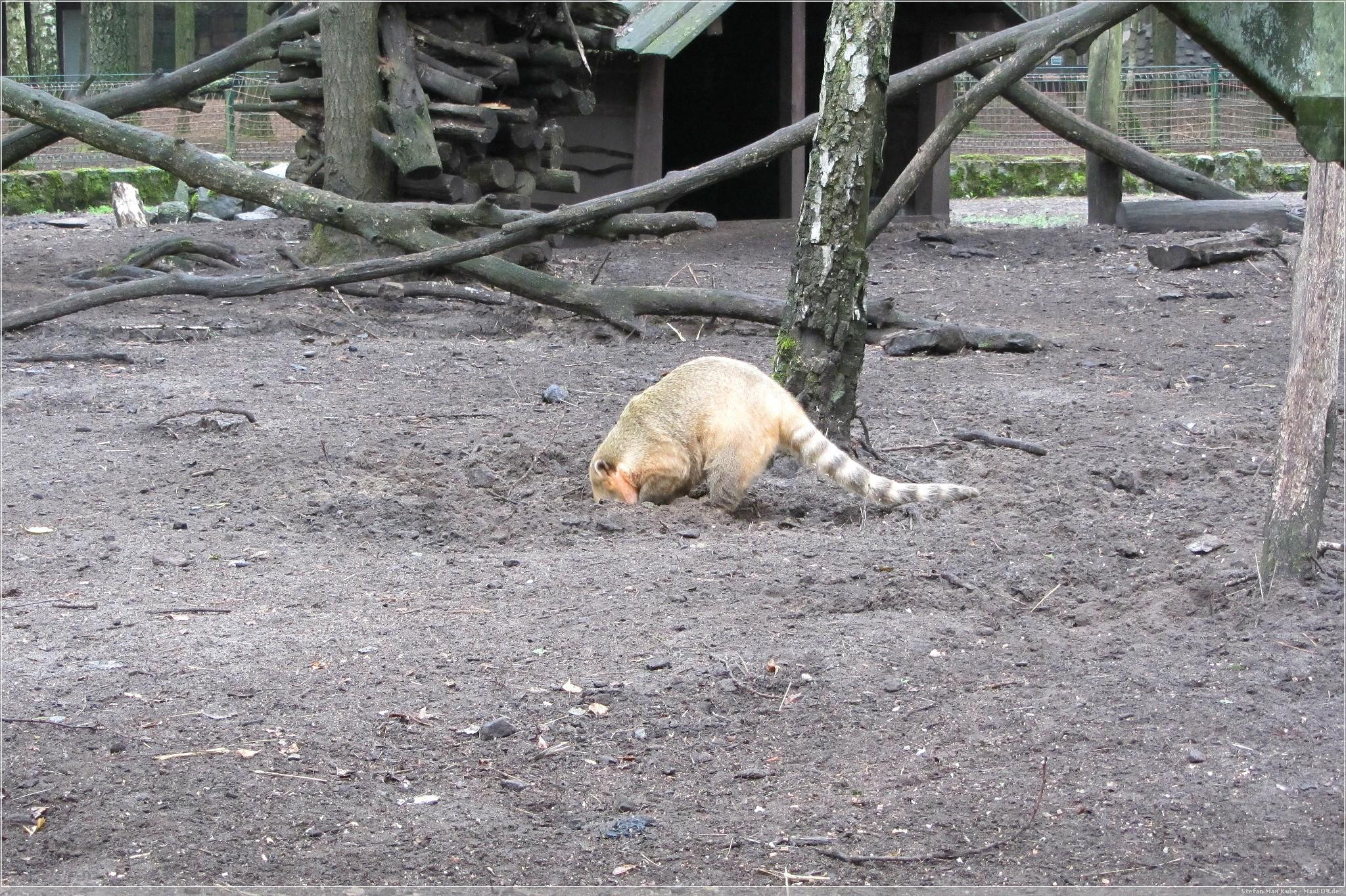 tierisch: Erlebnis-, Tier- und Freizeitpark Germendorf