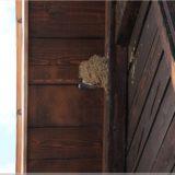 Schwalben im Plitvicer Nationalpark