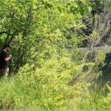 Jony sieht etwas, Plitvicer Nationalpark