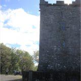 Ballynagowan Castle (Smithstown Castle)