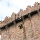 Blarney Stone, Blarney Castle