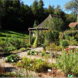 Kräutergarten im Freilichtmuseum Ballenberg