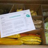 Bio- Gemüse von etepetete