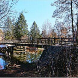 Brücke am alten Spreearm