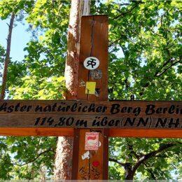 Gipfelkreuz Müggelberg