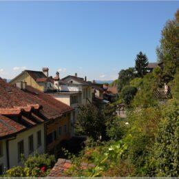 Blick über Thuner Dächer